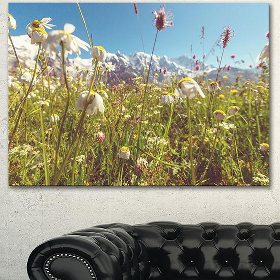 Designart Blooming Mountain Meadow Flowers Large Flower Canvas Art Print - 3 Panels