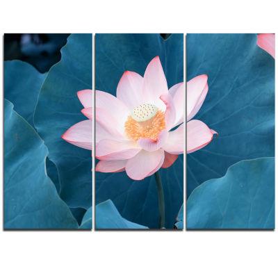 Designart Blooming Pink Lotus Flower Oversized Beach Triptych Canvas Artwork