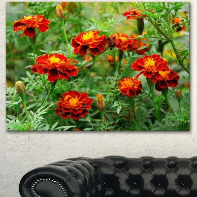 Designart Blooming Red Marigold Flowers Floral Canvas Art Print - 3 Panels