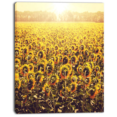 Designart Blooming Sunflowers At Sunset OversizedLandscape Canvas Art