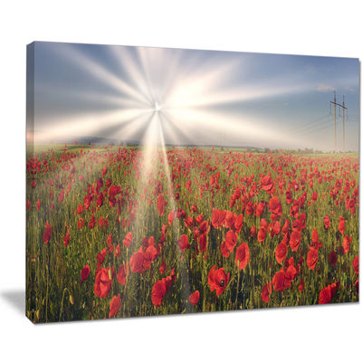 Designart Blooming Wild Poppies Under Sun Floral Canvas Art Print