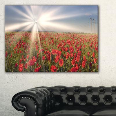 Designart Blooming Wild Poppies Under Sun Floral Canvas Art Print