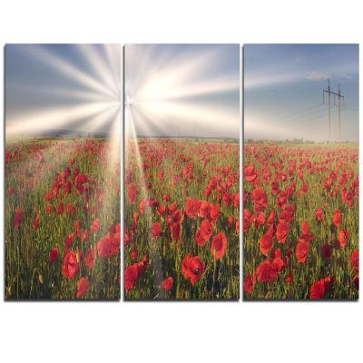 Designart Blooming Wild Poppies Under Sun FloralTriptych Canvas Art Print