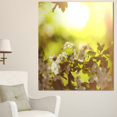 Designart Blossom Cherry On Green Background Floral Canvas Art Print