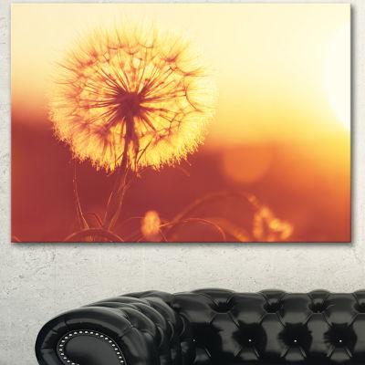 Designart Blossom Dandelion Flower On Brown LargeFlower Canvas Art Print