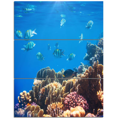 Designart Bright Blue Waters And Coral Fish LargeSeashore Triptych Canvas Print
