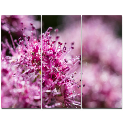 Designart Bright Pink Little Flowers Large FlowerTriptych Canvas Wall Art