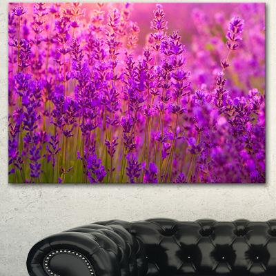 Designart Bright Purple Lavender Field Tihany Floral Canvas Art Print - 3 Panels