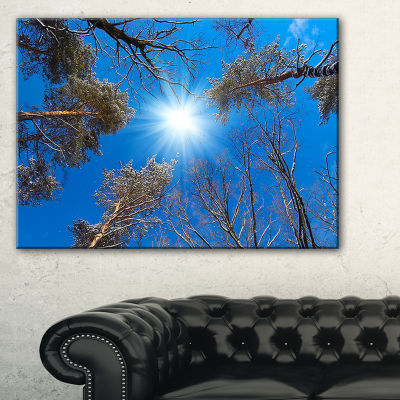 Designart Bright Sun In The Tree Top Circle ModernForest Canvas Wall Art
