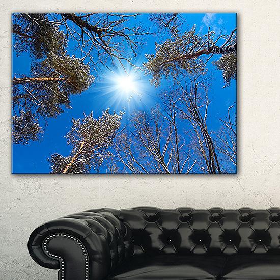 Designart Bright Sun In The Tree Top Circle ModernForest Canvas Wall Art