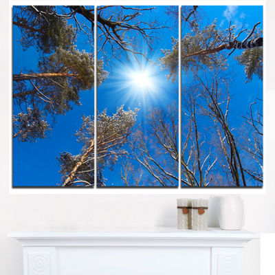 Designart Bright Sun In The Tree Top Circle ModernForest Triptych Canvas Wall Art