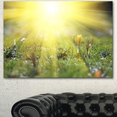 Designart Bright Sunset Above Spring Flowers Oversized Landscape Canvas Art - 3 Panels