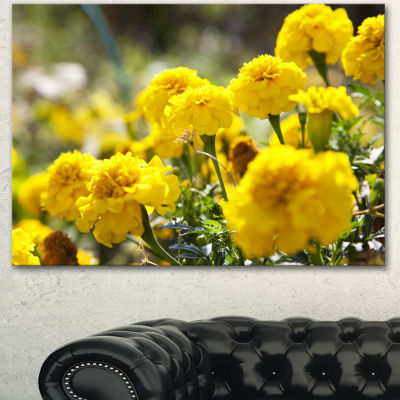 Designart Bright Yellow Marigold Flowers Floral Canvas Art Print