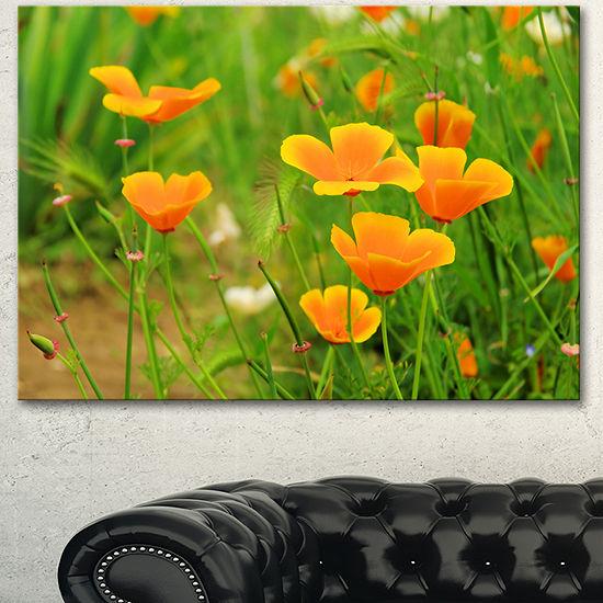 Designart Bright Yellow Poppy Flowers Floral Canvas Art Print