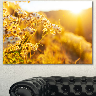 Designart Bright Yellow Rural Garden Flowers Floral Canvas Art Print