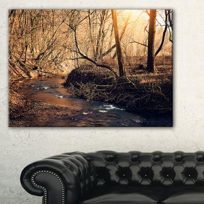 Designart Brown Creek In National Park Modern Forest Canvas Wall Art