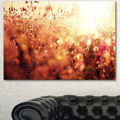 Designart Brown Shade Flowers In Sunshine Large Flower Canvas Art Print
