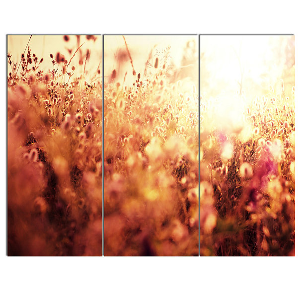 Designart Brown Shade Flowers In Sunshine Large Flower Canvas Art Print - 3 Panels