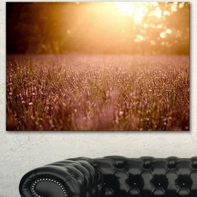Designart Brown Tinged Lavender Field Sunset Floral Canvas Art Print - 3 Panels