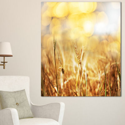 Designart Brown Wheat Plants In Field Floral Canvas Art Print