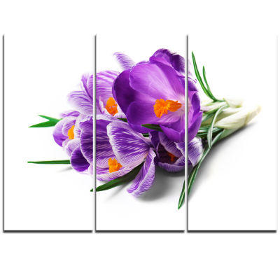 Designart Bunch Of Blooming Crocus Flowers Large Floral Wall Art Triptych Canvas