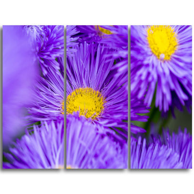 Designart Bunch Of Large Violet Flowers Large Flower Triptych Canvas Wall Art