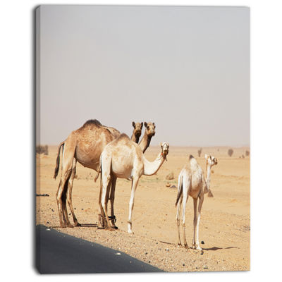 Designart Camels In Sunny Sahara Desert Animal Canvas Art Print