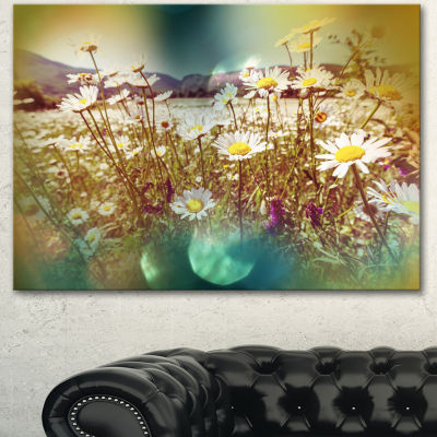 Designart Chamomile Flowers In Summer Garden Landscape Canvas Art Print - 3 Panels