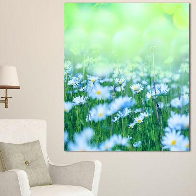 Designart Chamomile Flowers On Green Background Large Flower Canvas Art Print