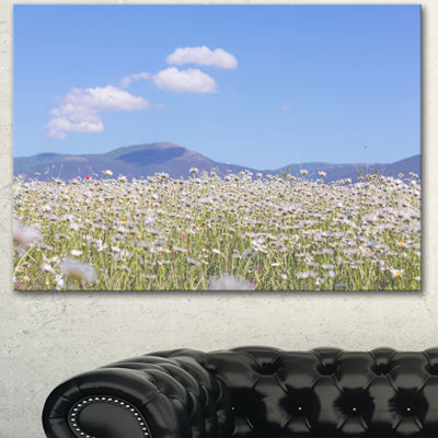 Designart Chamomiles With Hills On Background Large Flower Canvas Art Print