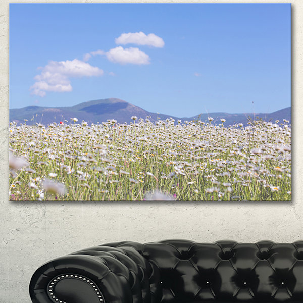 Designart Chamomiles With Hills On Background Large Flower Canvas Art Print - 3 Panels