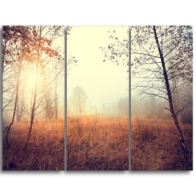 Designart Charming Rural Field In Morning Extra Large Wall Art Landscape