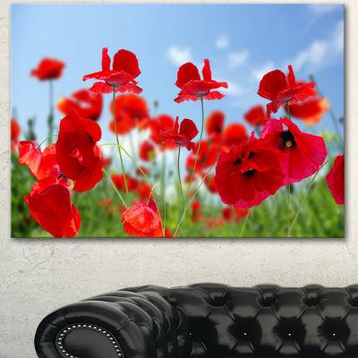 Designart Close Up Of Amazing Poppy Flowers FloralCanvas Art Print - 3 Panels