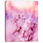 Designart Close Up View Of Blossoming Cherry Floral Canvas Art Print