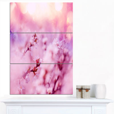 Designart Close Up View Of Blossoming Cherry Floral Canvas Art Print - 3 Panels
