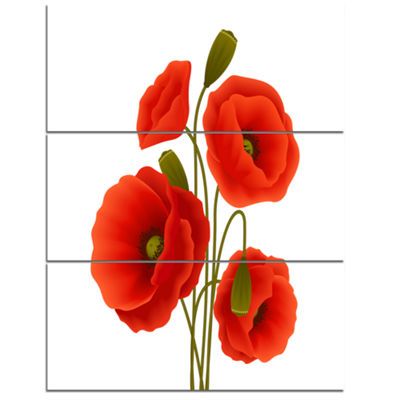 Designart Close Up View Of Poppy On White Floral Canvas Art Print - 3 Panels