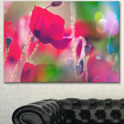 Designart Close Up View Of Red Poppy Flowers Floral Canvas Art Print