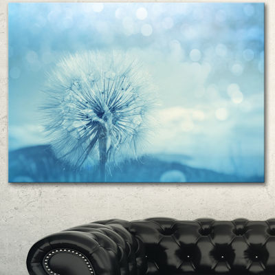Designart Close Up White Dandelion With Filter Large Flower Canvas Wall Art