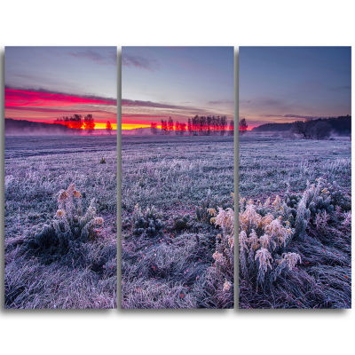 Designart Colorful Cold Frosty Morning Landscape Print Wall Artwork