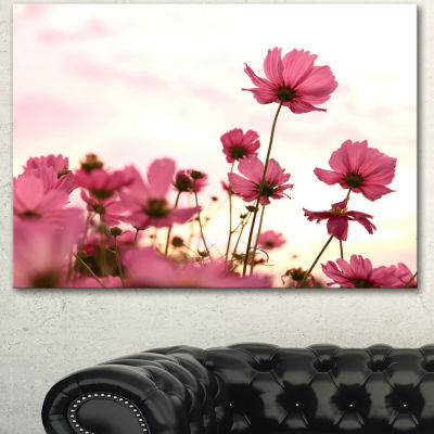 Designart Cosmos Flowers Meadow At Sunset Floral Canvas Art Print - 3 Panels