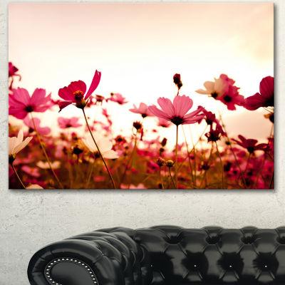 Designart Cosmos Flowers On Pink Background FloralCanvas Art Print
