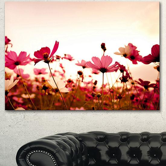 Designart Cosmos Flowers On Pink Background FloralCanvas Art Print - 3 Panels