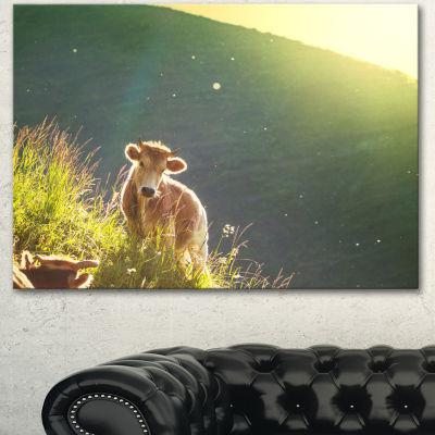 Designart Cow Grazing On Meadow Evening OversizedLandscape Canvas Art
