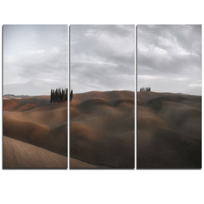 Designart Cypress Grove At The Field Panorama Landscape Triptych Canvas Art Print