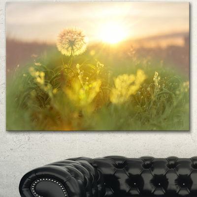 Designart Dandelion Blooming Flower In Field Floral Canvas Art Print