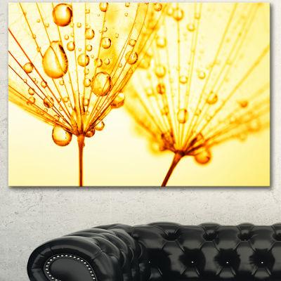Designart Dandelion Seeds With Water Drops FloralCanvas Art Print - 3 Panels