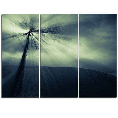 Designart Dead Tree In The Mysterious Land ModernSeascape Triptych Canvas Artwork