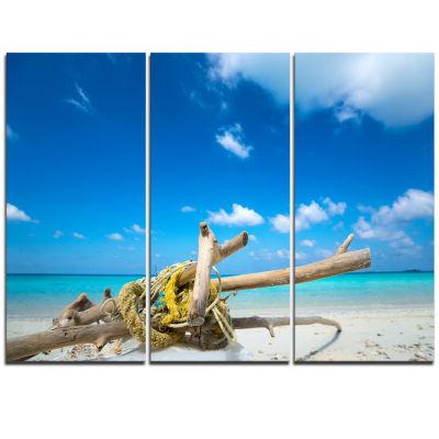 Designart Deadwood On White Sand Beach Seashore Triptych Canvas Art Print