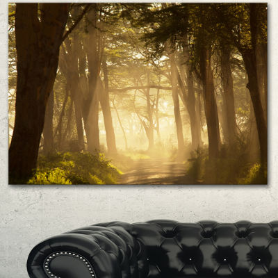 Designart Deep Jungle With Foggy Sunlight Oversized Landscape Canvas Art - 3 Panels