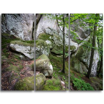 Designart Deep Moss Forest With Rocks Landscape Triptych Canvas Art Print